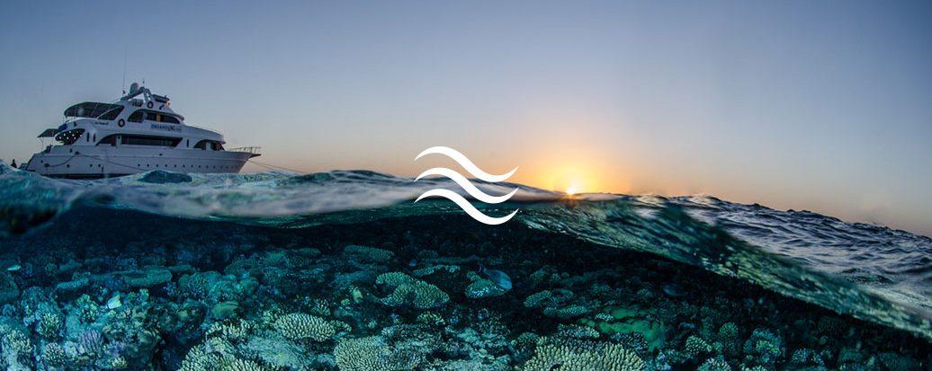 Prises de vue sous marine photographie et vidéo 4k en mer, rivière et piscine.